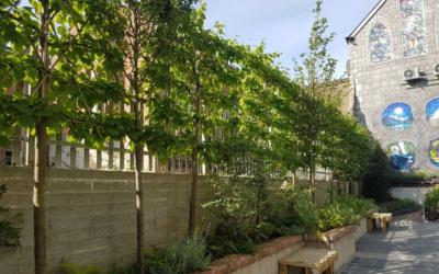 Our Gardens | Boyne Valley Garden Trail