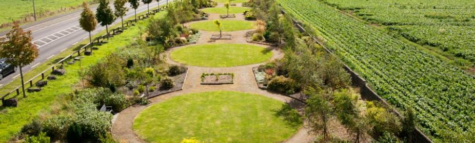 Boyne Valley Garden Trail » Julianstown Village Garden